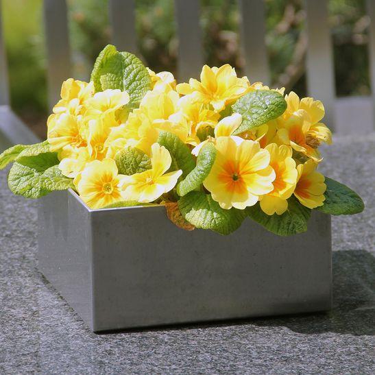 Vase aus Edelstahl